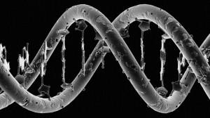 """人类基因组中的""""暗物质"""""""