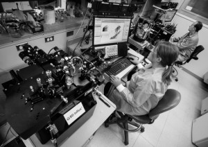 单细胞生物学促进跨学科合作