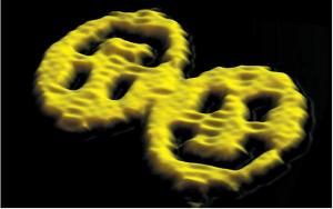 DNA折纸技术2