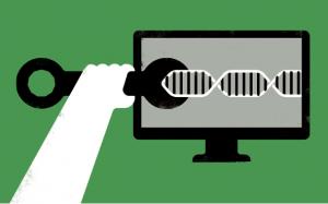 云端生信工具箱助力基因研究