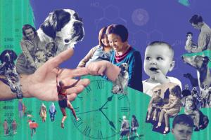 小狗助力抗衰老研究1