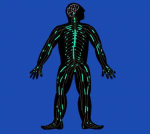 脊髓损伤治疗之神经再生技术