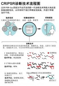 Next-generation diagnostics with CRISPR