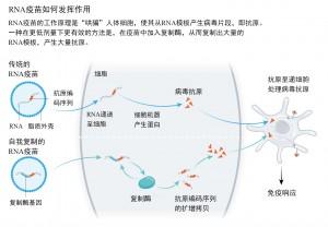 新冠疫情释放RNA疫苗潜力1