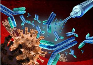 加大治疗性抗体的研发力度-1