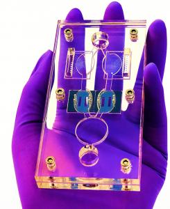 用于药物开发的人类微生理系统-1
